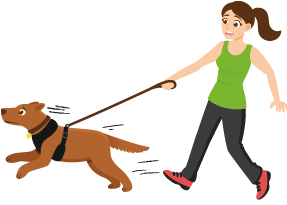 showing a dog pulling on leash with a woman
