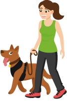 dog has learned leash guidance training